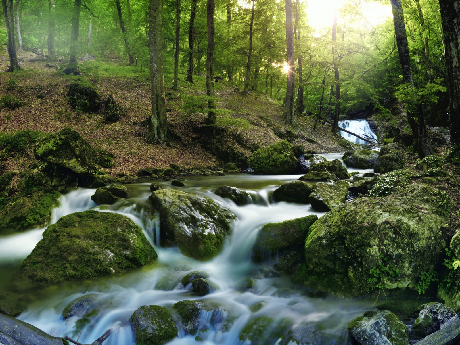 Dartmoor 11