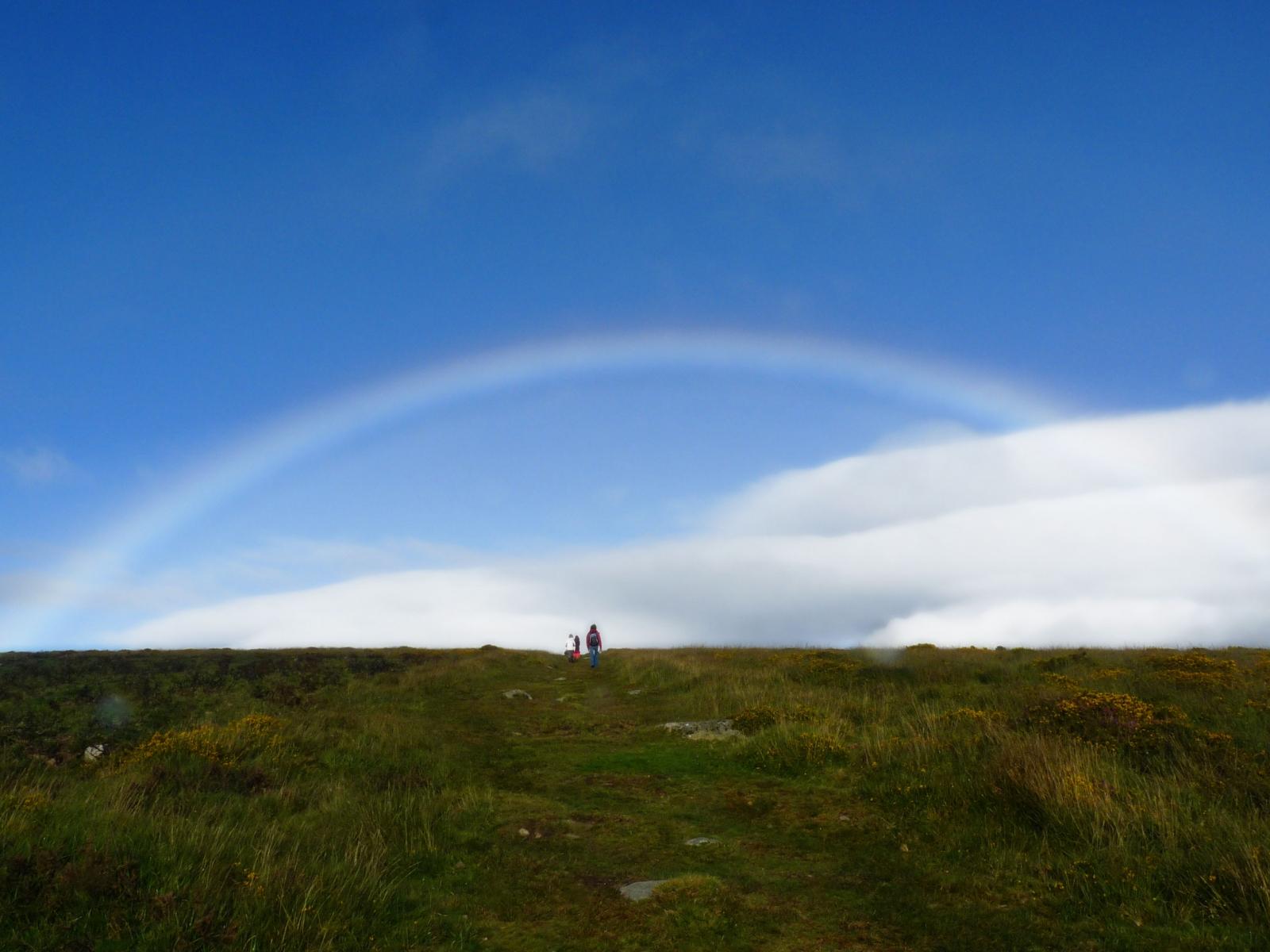 Dartmoor Rainbow