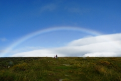 Dartmoor Rainbow