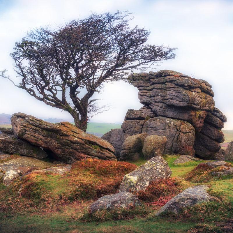 Dartmoor-1